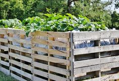 DYI projects with wooden pallets   Wooden Pallet Projects With Garden Used   Pallet Furniture DIYNo wouldn' t have an aching back with this garden