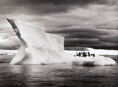 Icebergs near Paulet Island, Antarctica, photo by Sebastiao Salgado Street Photography, Landscape Photography, Art Photography, Magnum Photos, Documentary Photographers, Photo B, White Art, Black White, Black Swan