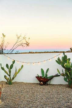 Entertaining Tips from The Block Shop Sisters Green and Pink and Taupe and White Exterior The Block, Desert Backyard, Arizona Backyard Ideas, Pot Plante, Desert Homes, Deco Table, Exterior Lighting, Land Scape, Backyard Landscaping