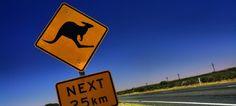 Road trip en Australie, Nouvelle-Zélande et Etats-Unis à 0.63 cts/jour avec location de camping-car et jusqu'à 250€ d'essence remboursés !