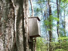 Tucked Inside a Birdhouse | 19 Ridiculously Creative Geocache Containers