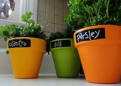 Cute idea! Brightly Painted Terracotta Pots With Chalkboard Labels #gardening