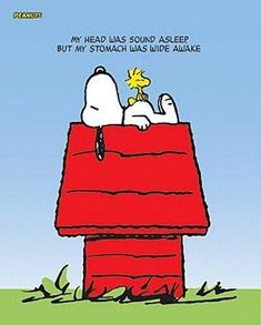 My Peanuts tribute website. It's all about Snoopy, Charlie Brown, and the rest of the Peanuts gang! Charlie Brown Y Snoopy, Snoopy Love, Peanuts Cartoon, Peanuts Snoopy, Cartoon Posters, Cartoon Tv, Cartoon Images, Cartoon Characters, Snoopy Comics