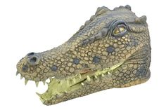 Ideas for Dinosaur themed birthday party. Dinosaur decorations, dinosaur party tableware, dinosaur party games, dinosaur party bags, dinosaur fancy dress and dinosaur toys Period Costumes, Adult Costumes, Female Costumes, Peter Pan Crocodile, Dinosaur Fancy Dress, Bristol, Dinosaur Party Games, Dinosaur Toys, Crocodile Costume