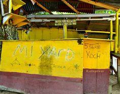 "Foto in ""Winnifred Beach, Portland, Jamaica"" - GoogleFotos"