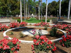 Fairmount Park Rose Garden, Riverside, California. Photo by danorth1 (Daniel Orth) via Flickr.