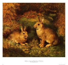 Watership Down - not just for kids!