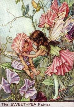 Cicely Mary Barker - The Sweet-Pea Fairies