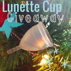 Lunette Menstrual Cup Giveaway! Ends 12/29/2013 at midnight!