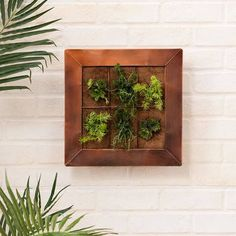 Copper Wall Planter