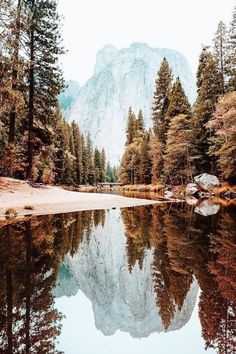 The 33 Most Beautiful Places In America Before You Die + Budget Travel Portofolio Fotografi Pemandangan Alam – Yosemite-Nationalpark Beautiful World, Beautiful Places, Beautiful Pictures, Trees Beautiful, Amazing Places, Heart Pictures, Wall Pictures, Beautiful Gorgeous, Landscape Photography