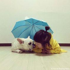 雨の日 #frenchbulldog #frenchie #dog #daughter #フレンチブルドッグ #女の子