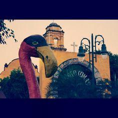 Miacatlán.Morelos.México