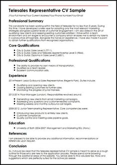Cinema Manager Sample Resume Resume Of The Film  Vision Professional  Games  Gameplay .