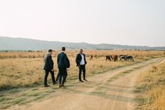 Arriving at The Cowshed we are always filled with delicious anticipation… nestles between the mountains in the Badfontein valley with it's own herb and veggie g Destination Wedding, Wedding Venues, Wedding Day, Dream Photography, Wedding Photography, Groom Style, Countryside, Country Roads, Dreams