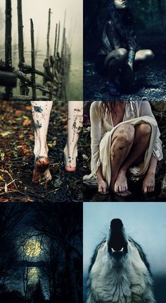 The Witch of Ravenhearst Manor Witch Aesthetic, Aesthetic Collage, Character Aesthetic, Character Design, Jeter Un Sort, Supernatural, Vampires And Werewolves, She Wolf, Southern Gothic