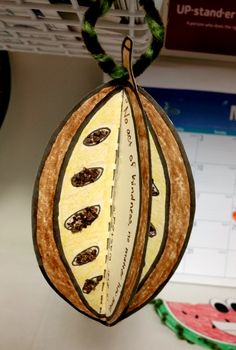 3D cocoa bean created by Payne Elementary volunteers.