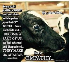Are you against animal cruelty People who believe at heart that it is wrong to harm animals for personal pleasure or profit are already professing vegan beliefs Their nex. Save Animals, Animals And Pets, Reasons To Be Vegan, Vegan Quotes, Why Vegan, Stop Animal Cruelty, Vegan Animals, Animal Welfare, Animal Quotes