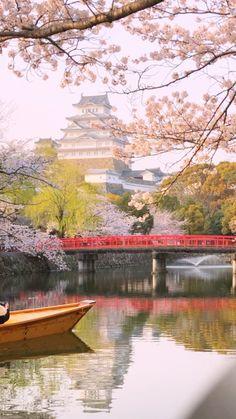 Beautiful Places In Japan, Beautiful Sites, Beautiful Places To Visit, Kumamoto Castle, Himeji Castle, Aesthetic Japan, Travel Aesthetic, Japan Spring, Tokyo Japan Travel