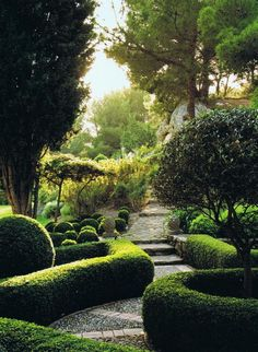 Tightly constructed boxwood hedges guide a gentle, relaxed pathway... beautiful.