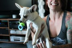 Dog with soother | Flickr - Photo Sharing!