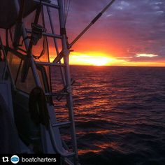 #Repost @boatcharters  Sunset on the continental shelf. #tuna #tunafishing #tunaseason #fishing #warrnambool #PortFairy #portland #continentalshelf #swvictoria #greatoceanroad #liveinvictoria  #visitvictoria #deepseafishing  #destinationwarrnambool #travelvictoria #fish  #tunafish #reels #rods #fishingaddict #rods #profishing #fishingcharters #melbournetouristguide by invictoria.com.au