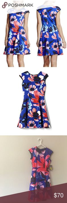 Vince Camuto Floral Fit & Flare Dress So cute and perfectly on trend! Brand new with tags. $148 retail. Stretchy neoprene. Back zip. No trades!! 0113016100dr Vince Camuto Dresses Mini