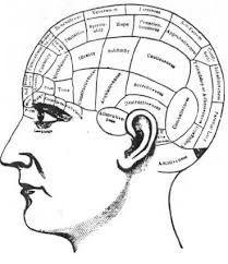 Risultati immagini per lobo frontale danneggiato