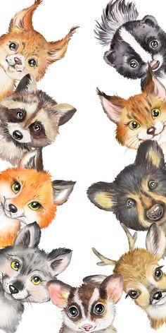 Wildlife Paintings, Animal Paintings, Animal Drawings, Cute Drawings, Watercolor Wolf, Watercolor Animals, Cute Animals Images, Cute Animal Pictures, Felt Animals