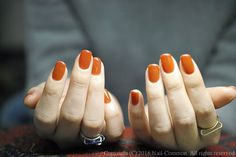 NAIL-COMMON: one color nail