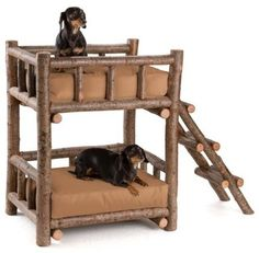 1000 Images About Bunk Beds For Dogs On Pinterest Dog