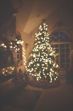 Merry Little Christmas. I just love Christmas. Christmas Time Is Here, Merry Little Christmas, Noel Christmas, Winter Christmas, All Things Christmas, Christmas Lights, Christmas Decorations, Christmas Tree Tumblr, Christmas Feeling