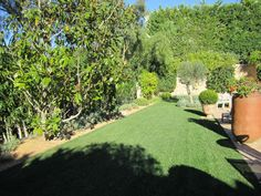 Using Soft Landscaping For Your Garden
