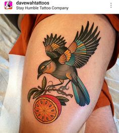 American traditional bird tattoo by Dave Wah