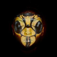wasp / bee makeup (insect costume makeup)