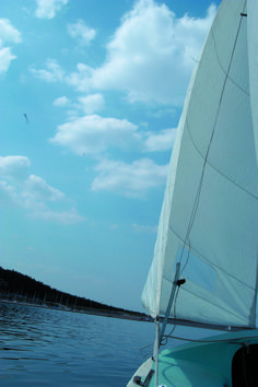 From a skipper's perspective: Sailing is a popular university sport at FAU.