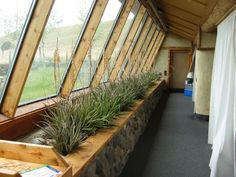 I love this idea, but I would grow food to actually eat, not the same boring red yucca over and over.