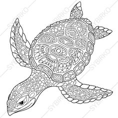 2 Coloring Pages Animal Book For Adults Instant Download Print