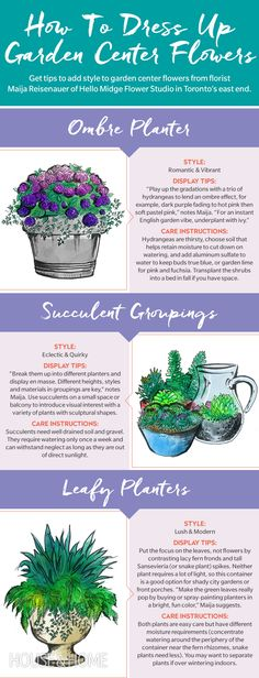 Florist Maija Reisenauer of Hello Midge Flower Studio in Toronto offers three scenarios for container plantings that no one would suspect came from a hardware or grocery store. |  Illustrations by Philipp Boltz
