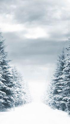 Winter iPhone Wallpaper 4