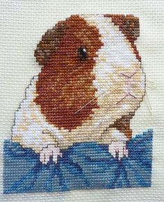 guinea pig cross stitch by craftytrekky, via Flickr