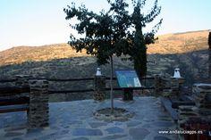 """Coordenadas GPS: 36º 56' 49"""" -3º 21' 12"""" / 36.946944, -3.353333  Foto de Julia Soler (www.facebook.com/juliasoler103) Bubión se encuentra situado en el corazón de Sierra Nevada, en el conocido Barranco de Poqueira a una altitud sobre el nivel del mar de 1290 metros. Su céntrica localización le permite disponer de impresionantes vistas. En días claros se puede ver a la vez el Mar Mediterraneo y Sierra Nevada desde el mismo punto."""