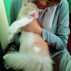 Lovely pet koko :*