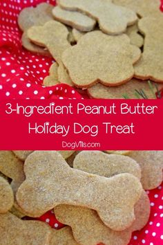 While you're baking the Christmas cookies this year, don't forget to whip up a special holiday dog treat for Fido! Check out our easy recipe! #dogfood #dogfoodwet #dognutrition #dognutritiontips #dognutritionguide