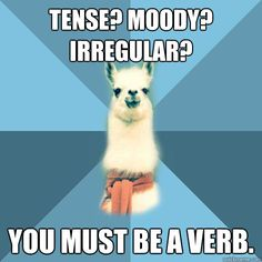 tense moody irregular you must be a verb - Linguist Llama