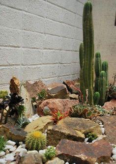 Ideas para decorar un jardín seco con piedras y cactus