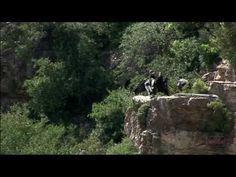 Grand Canyon National Park Plane Tours - http://bali-traveller.com/grand-canyon-national-park-plane-tours/