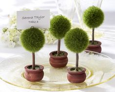 DIY: Topiary Escort Cards
