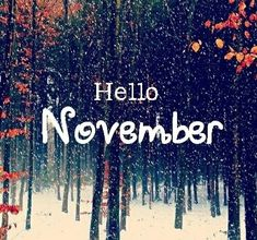 November Pictures, Hello November, October, Best Friend Tattoos, Winter Scenery, Christmas Shirts, Christmas Tree, Picture Photo, Free Images