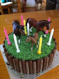 Easy Horse cake. Made for an 8 year old's bday. Double layer cake covered with ganache (or could use other icing), chocolate coated biscuit fingers, coconut died green for grass & plastic toy horses. Simple.